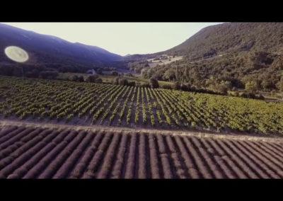 Domaine Serre des Vignes.00_01_58_19.Still006