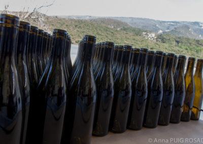 Sélection mise en bouteille Serre de Vigne février 2017 © Anna Puig Rosado-3-2
