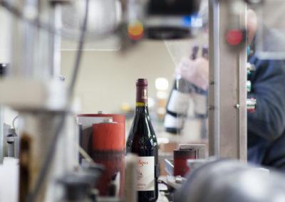 Sélection mise en bouteille Serre de Vigne février 2017 © Anna Puig Rosado-35